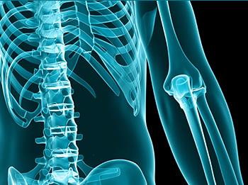 Traumatologia e Ortopedia